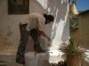 pintura-ecologica-con-chumberas-2