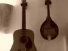 acoustic-guitar-und-mandoline-seagul-und-sigma