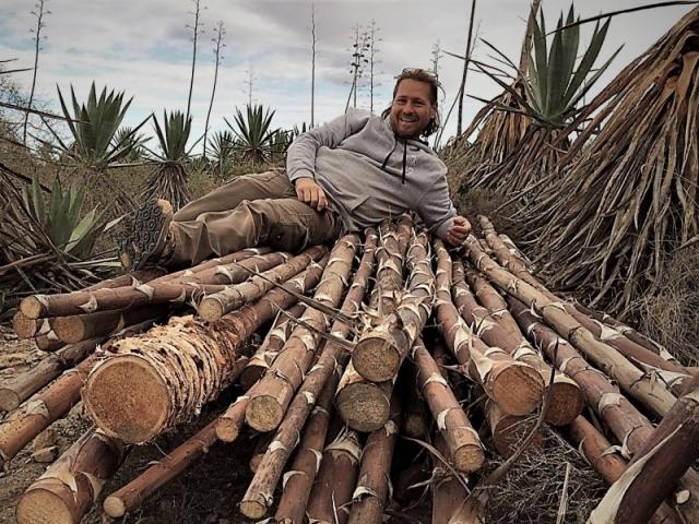 Timbe y la Madera del Desierto